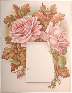 1910 Victorian Color Litho Print: Rose Floral Frame