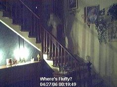 A popular ghost cam gets a hit - photo - Project: Paranormal