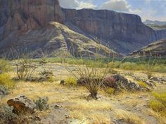 Fantastic light and depth - I'd love to see this 8'x6' ...just really big! Artist: Mark Haworth - Title: Desert Light - oil