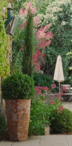 Mediterranean feel ~ love the valerian growing right out of the walls