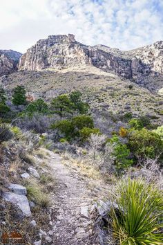There are so many things to do in Guadalupe Mountains National Park, but if this is your first road trip to the park it can be a little overwhelming. Don't worry, this list includes all the things you can't miss while on your vacation, plus a bunch of information to help you make your way around the park. Whether or not you like hiking and camping this list will make it easy to have a fun adventure. Fun Adventure, Greatest Adventure, Guadalupe Mountains National Park, Amazing Adventures, Go Camping, Monuments, Don't Worry, Trip Planning, Road Trip