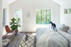 Windows were added everywhere, including in the bedroom in Amanda Bupp's old hunting cabin turned into a weekend home in the Catskills (Phoenicia, NY)