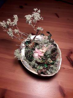 """El meu primer """"Fairy Garden"""".   Com es pot veure em falta pràctica; espero fer-ne molts més i cada vegada millor."""