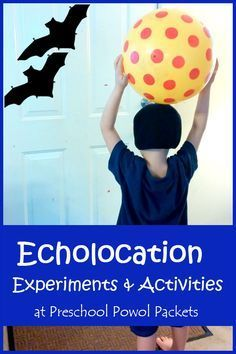 Bat Science: Echolocation Activities (from Preschool Powol Packets) Bat Science Experiments: Echolocation Activities! Bat Science: Echolocation Activities (from Preschool Powol Packets) 1st Grade Science, Kindergarten Science, Science Experiments Kids, Science For Kids, Science Activities, Steam Activities, Science Fun, Science Ideas, Science Lessons