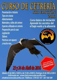 #curso de #cetreria y #adiestramiento de #aves #rapaces en #segovia Aprende los secretos de la #altaneria y vuela #aves #rapaces a tu puño desde el primer día  Más info en www.halconerosdecastilla.com