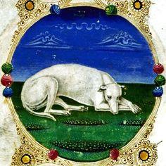 borso d'este bible | ... Crivelli,+white+sleeping+dog+from+the+Bible+of+Borso+d'Este,+1455.jpg