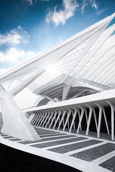 Liège-Guillemins railway station, Place des Guillemins, Liège, Belgium   designed (rebuild) by Santiago Calatrava   Photography by Johannes Heuckeroth