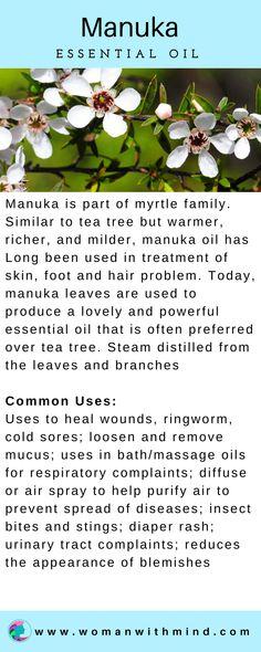 Manuka Essential Oil Guide & Application #essentialoils