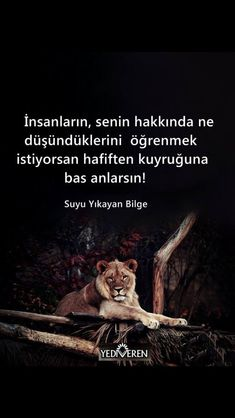 ♥️ilhan RÜZGAR ❤️ Poetry Quotes, Book Quotes, Maybe Tomorrow, Good Sentences, Weird Dreams, Sufi, Photo Quotes, Meaningful Words, Great Quotes