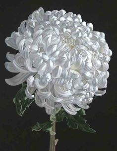 Would take a million years but I love the details of this Chrysanthemum (LEILANI)
