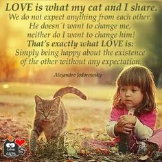 I love this quote by Alejandro Jodorowsky. My cats are my little healers. I can always count on them when I'm feeling out of sorts. Animals And Pets, Funny Animals, Cute Animals, Cat Quotes, Animal Quotes, Lovers Quotes, Crazy Cat Lady, Crazy Cats, I Love Cats