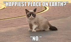 Grumpy Cat Has The Worst Day At Disneyland Ever