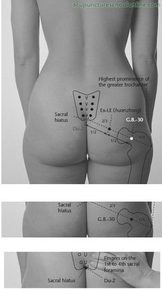 Ex-LE-Circle-Centre-HUANZHONG-Acupuncture-Points-1.jpg (363×645)