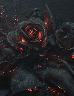 As part of a reference photoshoot for an illustration project by Warsaw-based creative studio Ars Thanea, a bouquet of roses was set on fire and photographed as they smoldered in the dark. Dark Fantasy, Fantasy Art, Lizzie Hearts, Art Noir, Arte Obscura, Gothic Art, Dark Gothic, Pics Art, Oeuvre D'art