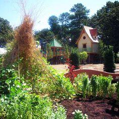 My Big Backyard At Memphis Botanical Garden