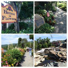 Lovely day here! Lovely area! Berkshires of Massachusetts!