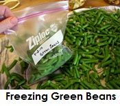 Freezing Green Beans, How to freeze green beans (Easy Meal To Freeze) Freezing Vegetables, Canning Vegetables, Fresh Vegetables, Veggies, Can Green Beans, Frozen Green Beans, Canning Food Preservation, Preserving Food, Pressure Cooker Beans