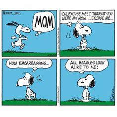 So close, Snoopy! #snoopy #comics #cartoon #snoopycomics #mom