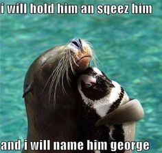 :) my favorite animal the otter and @Kat Christine is the penguin!! Its perfect!!
