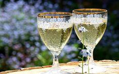 Recepty z bazových kvetov na pitie, jedenie aj liečenie - Modrý koník Elderflower Champagne, Flute Champagne, Champagne Glasses, Wedding Champagne, Cool Happy Birthday Images, Happy Birthday Fun, Birthday Wishes, Birthday Greetings, Gifts For Wedding Party