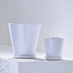 Festive Large Planters and Saucers | Crate and Barrel