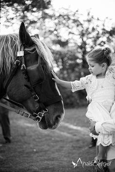 Mariage - calèche - cheval - enfant