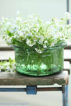 Flowers cut from the garden placed in a simple jar - French Larkspur My Flower, White Flowers, Beautiful Flowers, Ikebana, Bouquet Champetre, Flower Arrangements Simple, Deco Floral, White Gardens, Shades Of Green