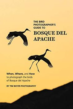 Brand: Author: Cost: (at the time of – Details) The post The Bird Photographer's Guide To Bosque del Apache: When, wherein, and H… appeared first on BookCheapTravels.com.