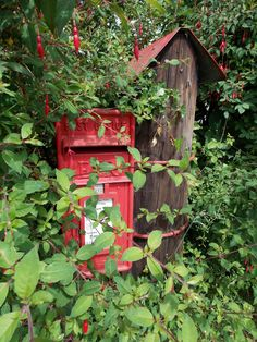 Royal Mail post box in the village of Iden, East Sussex, England, by B Lowe Living In England, You've Got Mail, Mail Boxes, Post Box, English Roses, East Sussex, Post Office, Royal Mail, Tree Branches