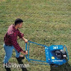 How to Revive Grass: Thinning Lawn - Step by Step | The Family Handyman