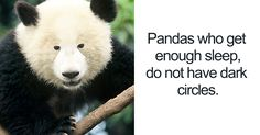 15+ Unbelievable Facts That Are Actually 100% True | Bored Panda