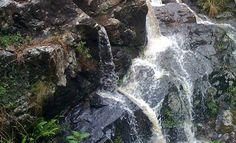 Waterfalls near Brisbane