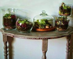 5 formas diferentes de montar un jardín en casa   Cuidar de tus plantas es facilisimo.com