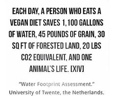 reasons to go vegan