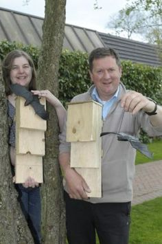 FAMILIES had fun building bat boxes at Norton Priory's Big Wood on Saturday. Bat Box, Box Building, Events, Children, How To Make, Fun, Young Children, Boys, Kids