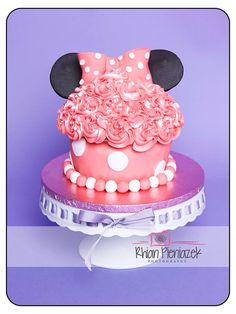 Cakes By Helzbach. Minnie Mouse Cake, Birthday Cake, Cakes, Drink, Desserts, Photography, Food, Tailgate Desserts, Beverage