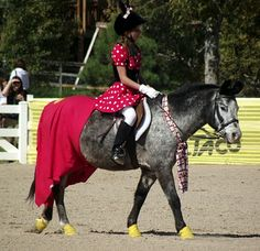 Braymere Custom Saddlery: Halloween horse costumes mickey and minnie