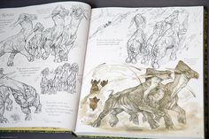 Critique de livre: The Wildlife of Star Wars Terryl Whitlatch, Star Wars Planets, Original Trilogy, Love Stars, Field Guide, Creature Design, Nerd Stuff, Book Review, Aliens