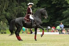Red Dead Online, Dressage, Animal Drawings, Drawing Ideas, South America, Baroque, Equestrian, Riding Helmets, Spanish