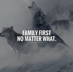 Family first! – Danielle Laycock Family first! Family first! Wolf Quotes, New Quotes, Wisdom Quotes, True Quotes, Motivational Quotes, Music Quotes, Short Inspirational Words, Family First Quotes, Life Quotes Family