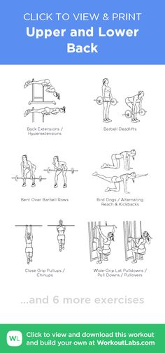 Upper and Lower Back –click to view and print this illustrated exercise plan created with #WorkoutLabsFit
