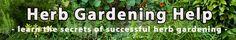 Herb Gardening Help