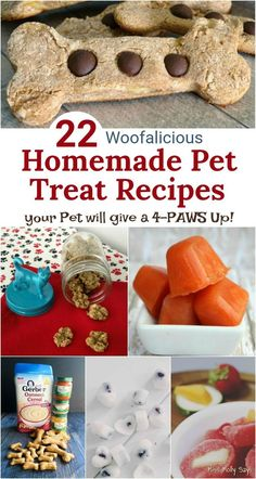 Check out these PAWSOME Homemade Pet Treats from our pet loving friends! We love making homemade pet treats, as we know exactly what is in them. Dog Biscuit Recipes, Dog Treat Recipes, Healthy Dog Treats, Dog Food Recipes, Doggie Treats, Pet Treats Diy, Homemade Cat Food, Homemade Dog Cookies, Homemade Horse Treats