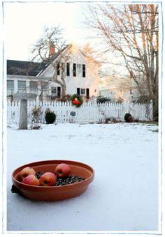 Susan Branch's House, Martha's Vineyard