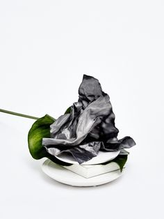 """""""Concrete Nature"""" - set design and art direction by Camille Boyer - photography by Jack Johnstone"""