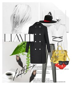 """""""LIMIT....."""" by pam0713 ❤ liked on Polyvore featuring Marni, Valentino, Dolce&Gabbana, Giorgio Armani, Sophie Hulme and CÉLINE"""