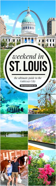The ultimate guide to spending a weekend in St. Louis, Missouri, including where to stay, what to do (most of which is completely FREE), and where to eat! A must-read for anyone planning a fun and affordable getaway to the Gateway City   Gateway to the West: St. Louis Weekend Travel Guide by blogger Stephanie Ziajka from Diary of a Debutante