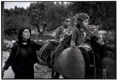 Kritsa in Crete, Greece, 1964. Going home from the fields. © Constantine Manos/Magnum Photos