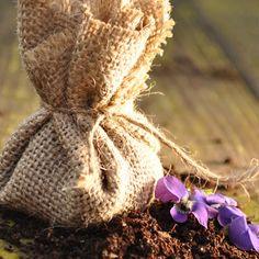Mini Flower Seed Pockets