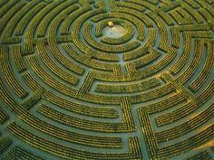 "Reignac-sur-Indre – the largest plant maze in the world. Opened in 1996, the 10 acre maze is ever changing. In the summer, a gorgeous field of sunflowers appear and in winter the maze is ""remarked and sown to reappear as a new design in spring."""